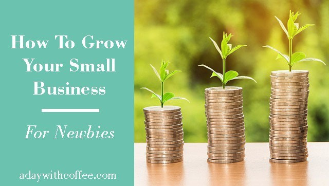 how to grow your small business for newbies