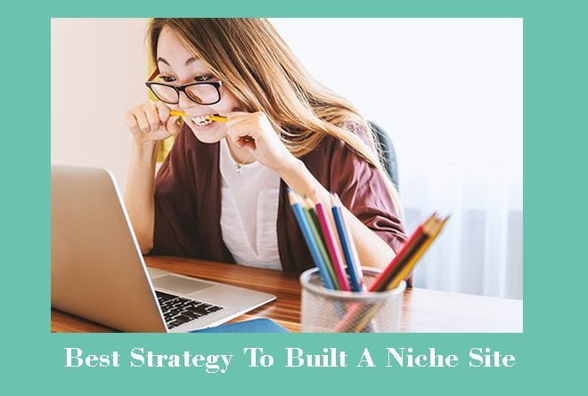 best strategy to build a niche site