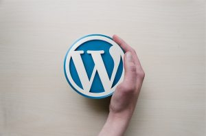 what-is-wordpress-can-i-make-money-from-it-